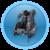 Компенсаторы плавучести