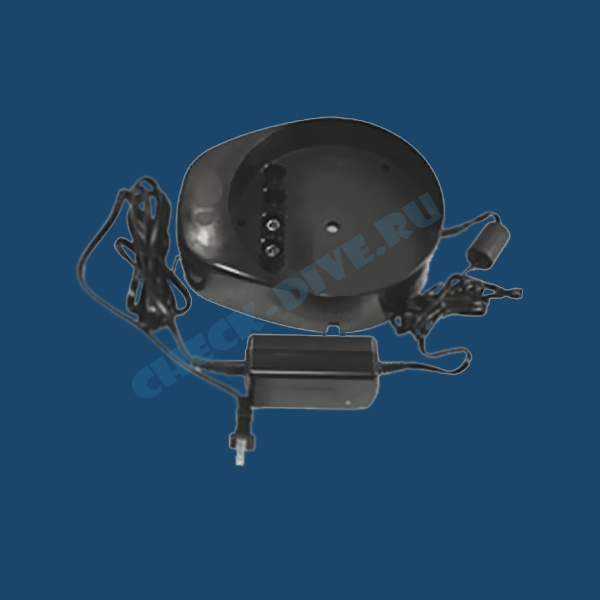 Зарядное устройство Sea-Doo ZZ71